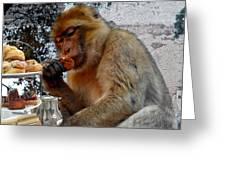 Monkey Tea Party Greeting Card by Jan Steadman-Jackson