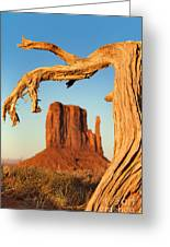Monument Valley Greeting Card by Jane Rix