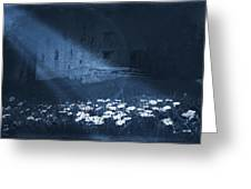 Moon Light Daisies Greeting Card by Svetlana Sewell