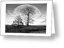Moonlit Silhouette Greeting Card by Brian Wallace
