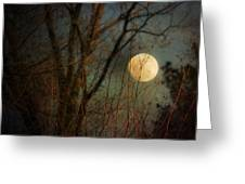 Moonrise Greeting Card by Jai Johnson