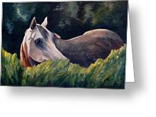 Morning Gray Greeting Card by Donna Teleis