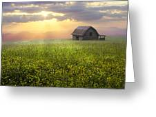 Morning Has Broken Greeting Card by Debra and Dave Vanderlaan