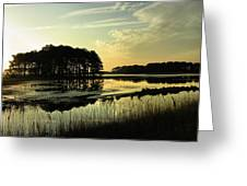 Morning On Assateague Island Greeting Card by Steven Ainsworth
