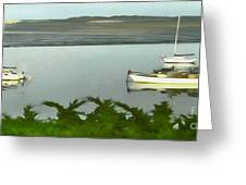 Morro Bay Sail Boats Greeting Card by Gregory Dyer