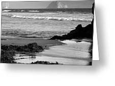 Morro Bay Shoreline V Greeting Card by Steven Ainsworth