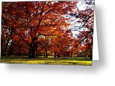 Morton Arboretum In Colorful Fall Greeting Card by Paul Ge