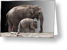 Mother And Baby Greeting Card by Sheila Laurens