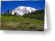Mount Rainier In Summer Greeting Card by Sean Griffin