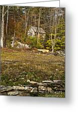 Mountain Cabin Greeting Card by John Greim