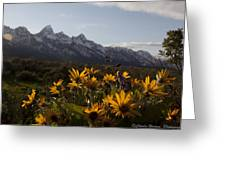 Mountain Flowers Greeting Card by Charles Warren