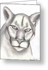 Mountain Lion Greeting Card by Rick Hill