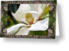 Mountain Magnolia Greeting Card by Bell And Todd