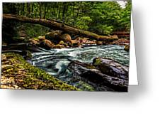 Mountain Stream Iv Greeting Card by Christopher Holmes