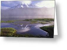 Mt Rainier An Active Volcano Encased Greeting Card by Tim Fitzharris