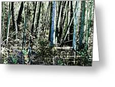 Mystery Forest Greeting Card by Olivier Le Queinec