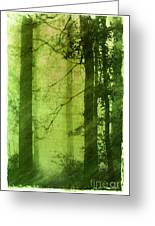 Mystical Glade Greeting Card by Judi Bagwell