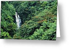 Nanue Falls Hawaii Greeting Card by Greg Vaughn