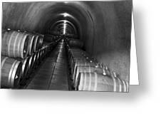 Napa Wine Barrels In Cellar Greeting Card by Shane Kelly