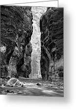 Narrows Of The Virgin River Greeting Card by Nathan Mccreery