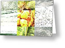Nature Scape 024 Greeting Card by Robert Glover