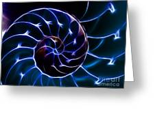 Nautilus Shell - Electric - V2 - Blue Greeting Card by Wingsdomain Art and Photography