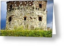 Nebojsa tower in Belgrade Greeting Card by Elena Elisseeva