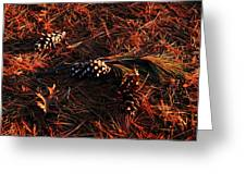 Needles Cones And Oak Leaf Greeting Card by Larry Ricker