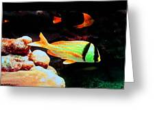 Neon Fish Greeting Card by Val Oconnor