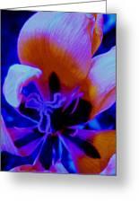 Neon Tulip Expression Greeting Card by Allen n Lehman