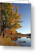 New Mills Meadow Pond Greeting Card by Juergen Roth