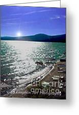 Night Glimmers Greeting Card by DJ Laughlin