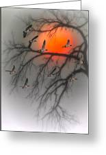 Nine Tonight Greeting Card by Tom York Images