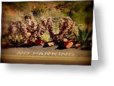 No Parking Greeting Card by Cindy Wright