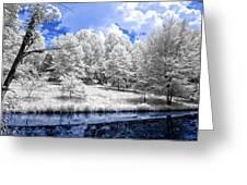 Nobob Pond Ir Greeting Card by Amber Flowers