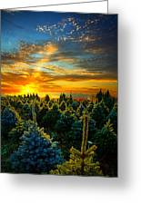 Not Forgotten Greeting Card by Phil Koch