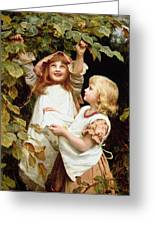 Nutting Greeting Card by Frederick Morgan