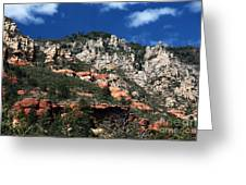 Oak Creek Nature Greeting Card by John Rizzuto