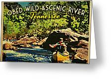 Obed Wild Scenic River Tennessee  Greeting Card by Flo Karp