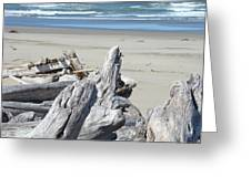 Ocean Beach Driftwood Art Prints Coastal Shore Greeting Card by Baslee Troutman