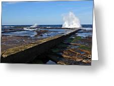 Ocean View Greeting Card by Kaye Menner
