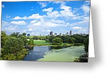 Office Buildings From A Park Greeting Card by Inti St. Clair