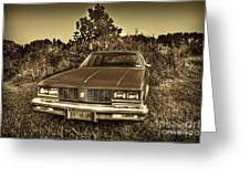 Old Car In Field Greeting Card by Dan Friend