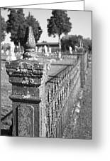 Old Graveyard Fence In Black And White Greeting Card by Kathy Clark