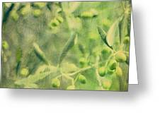 Olive And Leaf Greeting Card by Linde Townsend