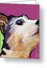 Ollie Greeting Card by Pat Saunders-White