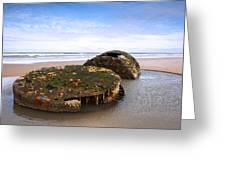 On A Beach Greeting Card by Svetlana Sewell