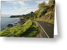 On The Road Around The Coromandel Greeting Card by Dawn Kish