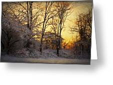 Once Upon A Winter Morning.. Greeting Card by Yelena Rozov