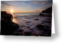 One And The Same In Maine Greeting Card by Chad Tracy